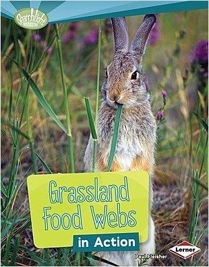 Cover: Grassland Food Webs in Action