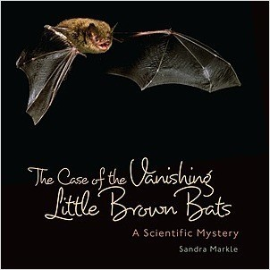 Cover: The Case of the Vanishing Little Brown Bats: A Scientific Mystery