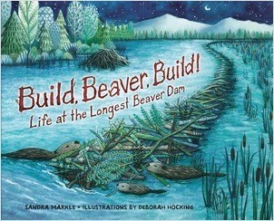 Cover: Build, Beaver, Build!: Life at the Longest Beaver Dam