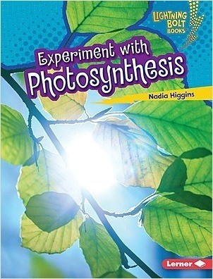 Cover: Experiment with Photosynthesis