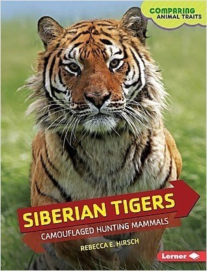 Cover: Siberian Tigers: Camouflaged Hunting Mammals
