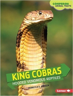 Cover: King Cobras: Hooded Venomous Reptiles