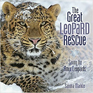 Cover: The Great Leopard Rescue: Saving the Amur Leopards