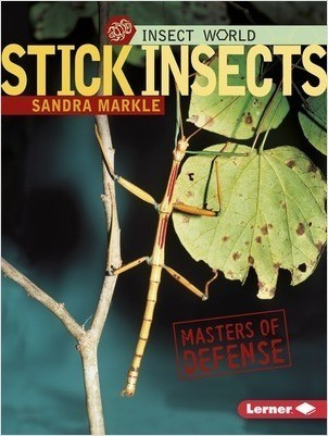 Cover: Stick Insects: Masters of Defense