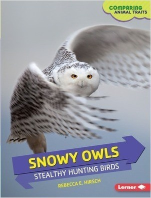 Cover: Snowy Owls: Stealthy Hunting Birds
