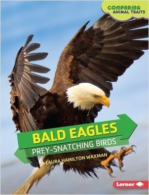 Cover: Bald Eagles: Prey-Snatching Birds