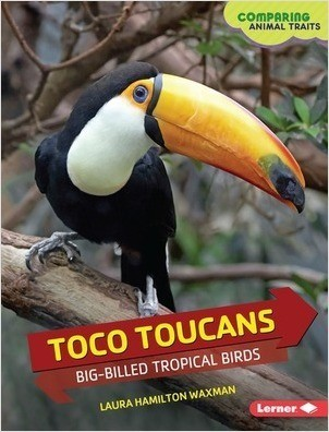 Cover: Toco Toucans: Big-Billed Tropical Birds