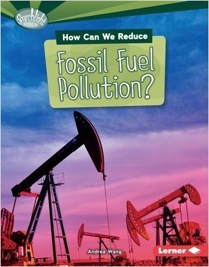 Cover: Searchlight Books ™ — What Can We Do about Pollution? — Library Bound Set