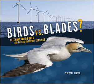 Cover: Birds vs. Blades?: Offshore Wind Power and the Race to Protect Seabirds