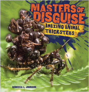 Cover: Masters of Disguise: Amazing Animal Tricksters