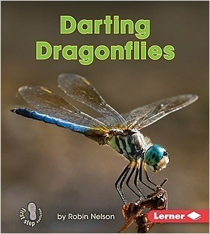 Cover: Darting Dragonflies