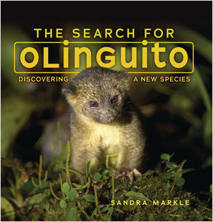 Cover: The Search for Olinguito: Discovering a New Species