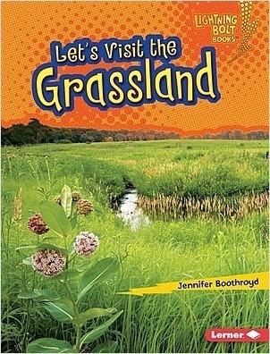 Cover: Let's Visit the Grassland