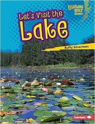 Cover: Let's Visit the Lake