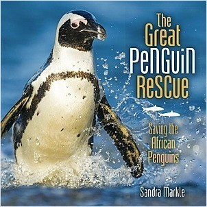 Cover: The Great Penguin Rescue: Saving the African Penguins