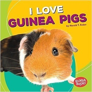 Cover: I Love Guinea Pigs