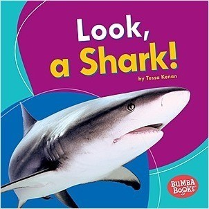 Cover: Look, a Shark!