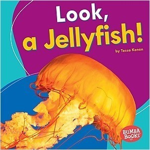 Cover: Look, a Jellyfish!