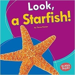 Cover: Look, a Starfish!