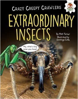 Cover: Extraordinary Insects