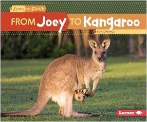 Cover: From Joey to Kangaroo