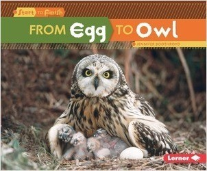 Cover: From Egg to Owl