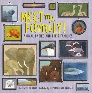 Cover: Meet My Family!: Animal Babies and Their Families