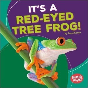 Cover: It's a Red-Eyed Tree Frog!