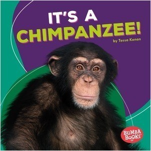 Cover: It's a Chimpanzee!