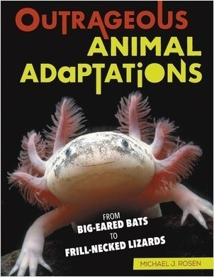 Cover: Outrageous Animal Adaptations: From Big-Eared Bats to Frill-Necked Lizards