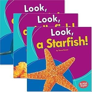 Cover: Bumba Books ™ — I See Ocean Animals — eBook Set