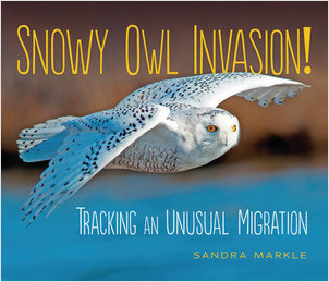 Cover: Snowy Owl Invasion!: Tracking an Unusual Migration