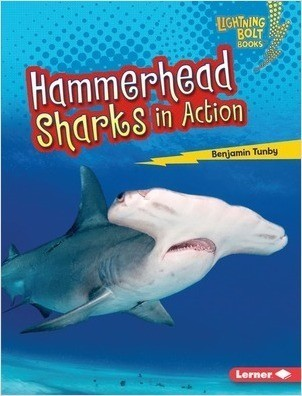 Cover: Hammerhead Sharks in Action