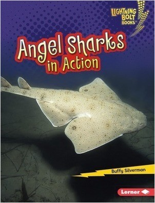 Cover: Lightning Bolt Books ™ — Shark World — eBook Set