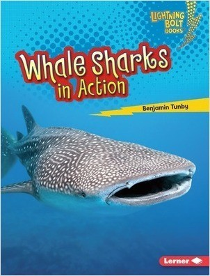 Cover: Whale Sharks in Action