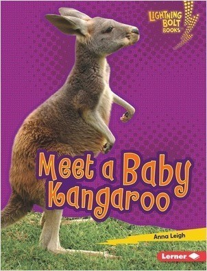 Cover: Meet a Baby Kangaroo