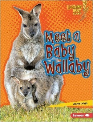 Cover: Meet a Baby Wallaby