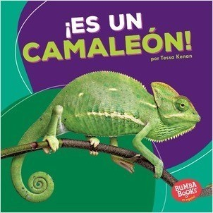 Cover: ¡Es un camaleón! (It's a Chameleon!)