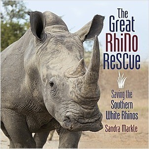 Cover: The Great Rhino Rescue: Saving the Southern White Rhinos