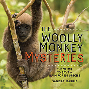 Cover: The Woolly Monkey Mysteries: The Quest to Save a Rain Forest Species
