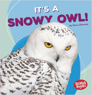 Cover: It's a Snowy Owl!
