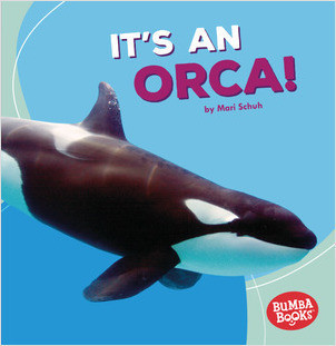 Cover: It's an Orca!