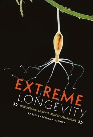 Cover: Extreme Longevity: Discovering Earth's Oldest Organisms