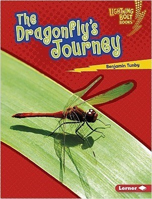 Cover: The Dragonfly's Journey