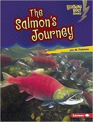 Cover: The Salmon's Journey