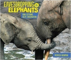Cover: Eavesdropping on Elephants: How Listening Helps Conservation