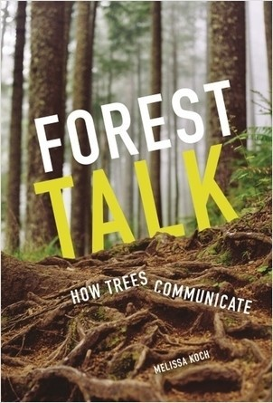 Cover: Forest Talk: How Trees Communicate