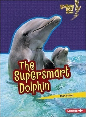 Cover: The Supersmart Dolphin