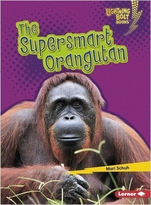 Cover: The Supersmart Orangutan