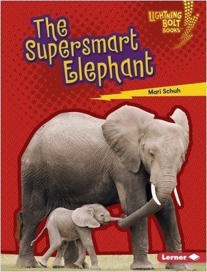 Cover: The Supersmart Elephant